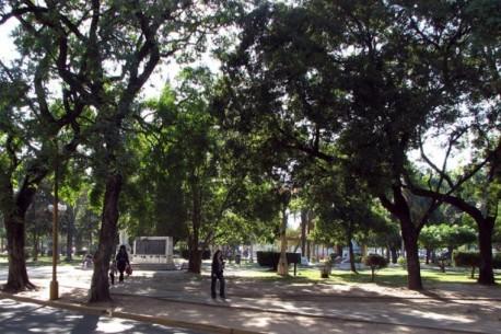 La obra de las cocheras en Parque Alberdi no entrará en conflicto con el medio ambiente